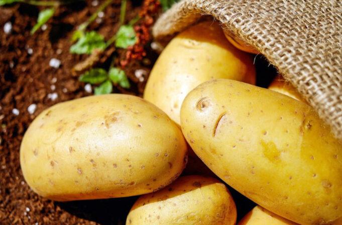 krumpir je dobar za naše zdravlje