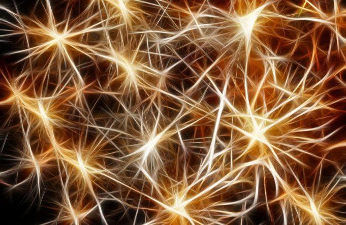 neuroni i starenje