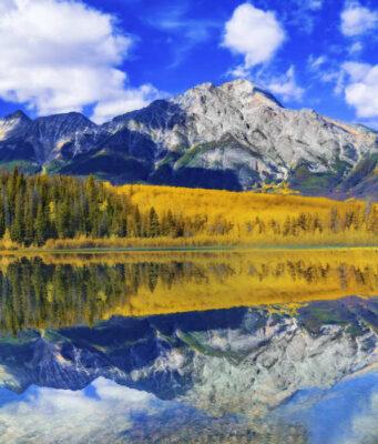 aspen jesen